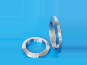 Lens Ring Joint Gasket